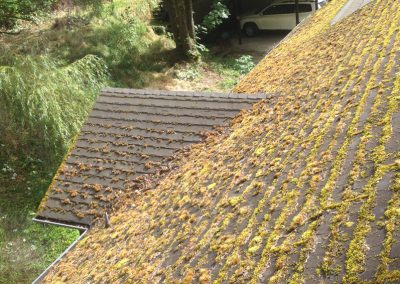 roof 1 before