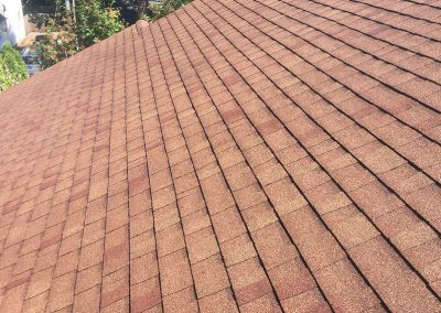 roof 2 after