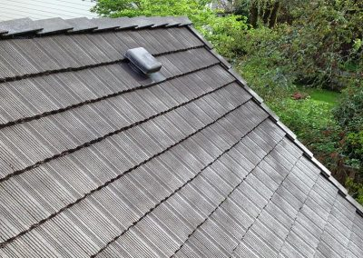 roof 4 after