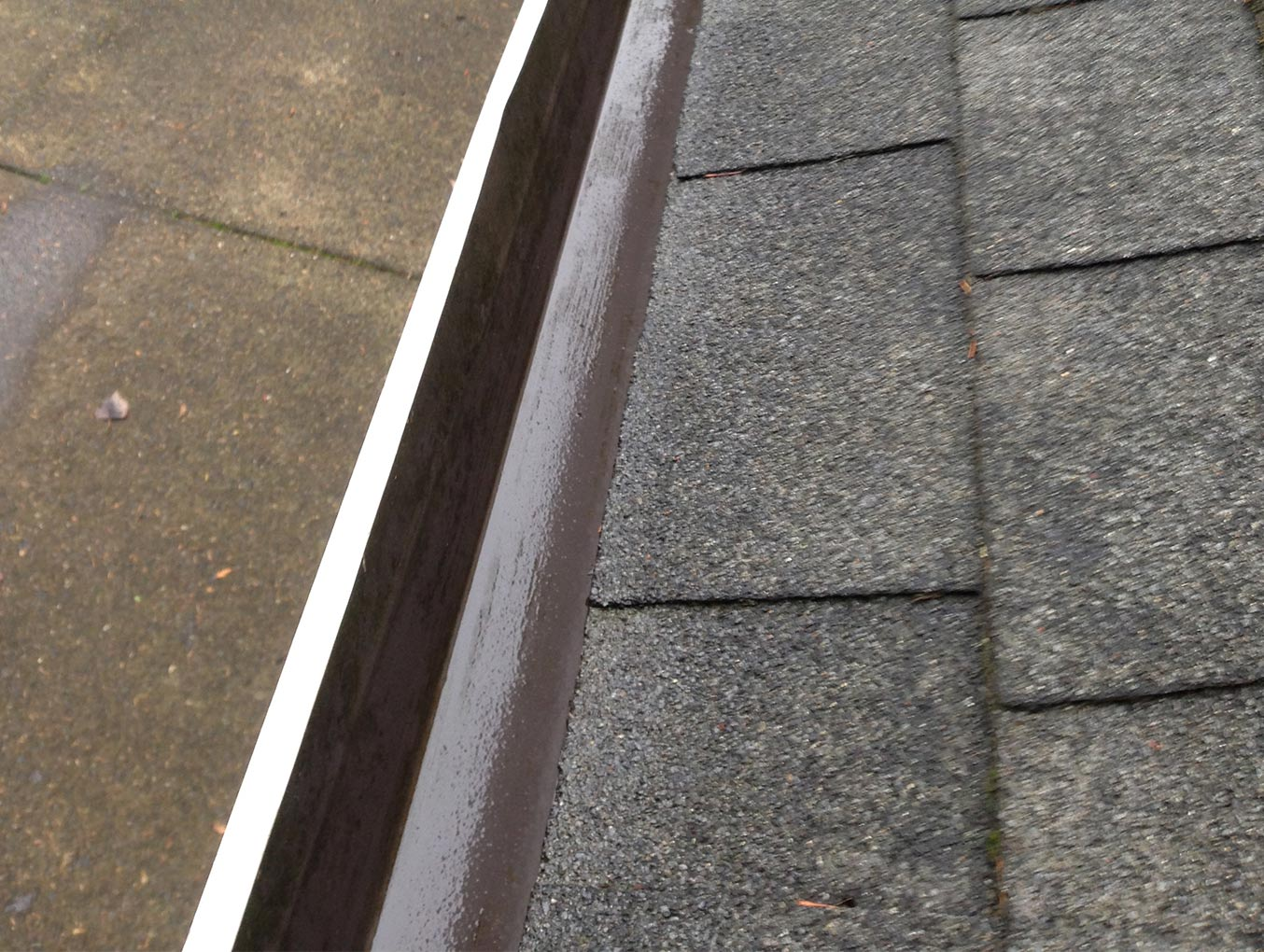 cleaned out Portland gutter