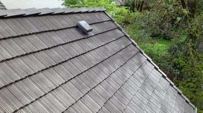 Roof 4 After Moss Busters