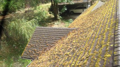 Portland Roof Cleaning Service Moss Busters